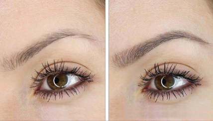 feel in brows